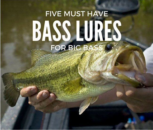 5 Must Have Bass Lures For Big Bass